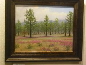 Garner Valley with red grasses
